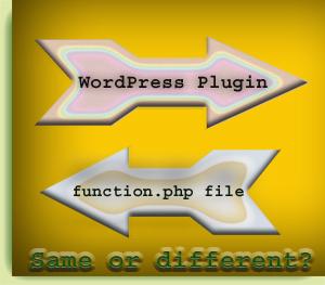 WordPress plugin and function.php file