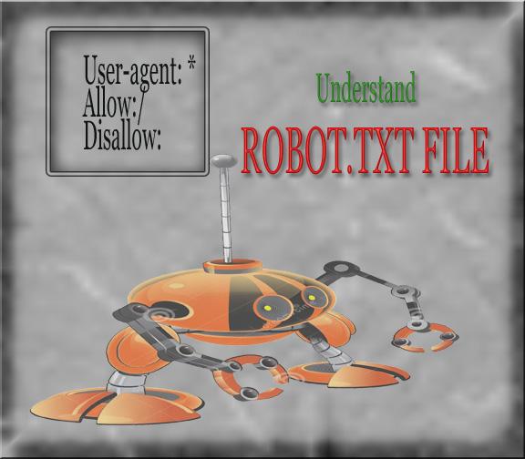 Understanding Robot.txt file focus