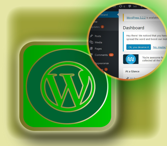 How to install WordPress focus