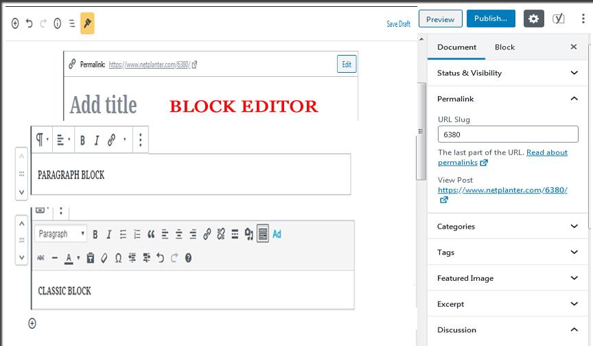 Block Editor's screen
