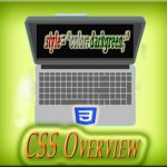 A Detective Overview of CSS